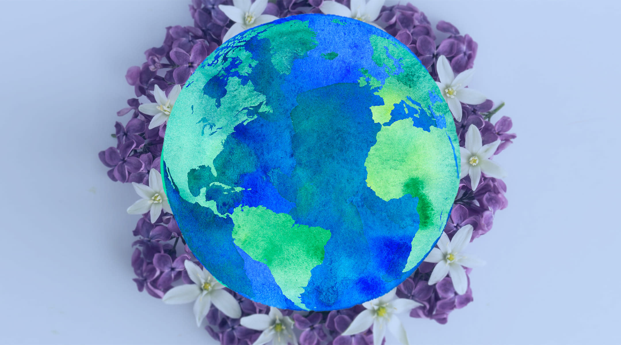 earth and flower collage