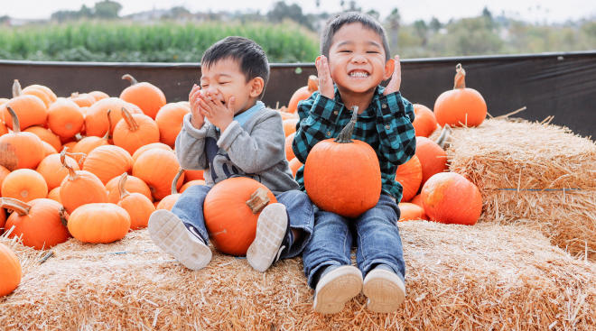 two little boys having fun at pumpkin patch around halloween time