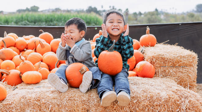 toddlers play and laughing at pumpkin patch