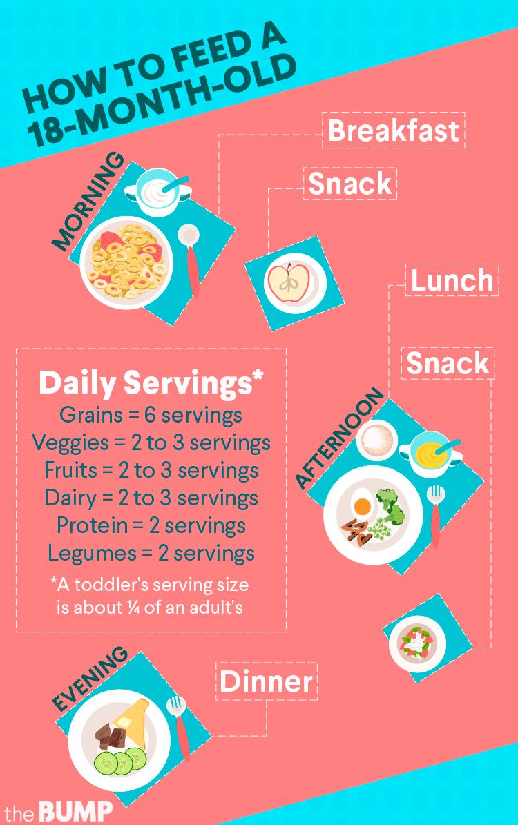 18-mos-toddler-feeding-chart