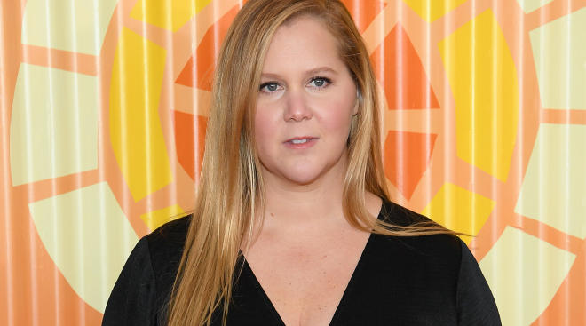 actress amy schumer posts about her egg retrieval procedure