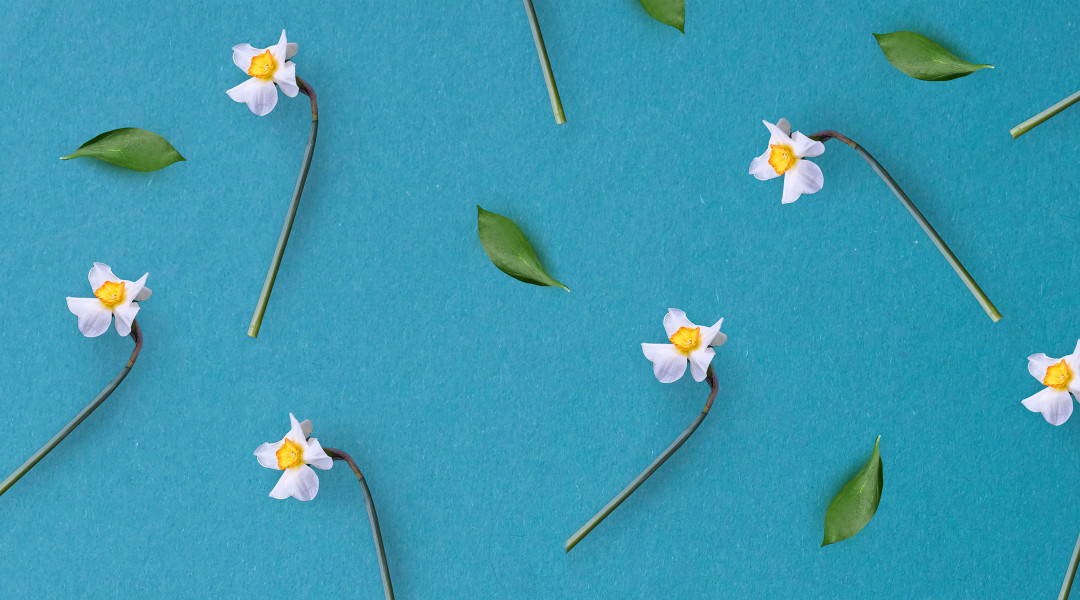 Spring Baby Names: Beautifully Bright Baby Names Inspired By Spring