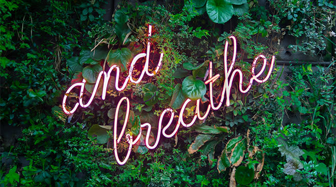 """Neon sign hung on plant wall that says, """"just breathe"""""""