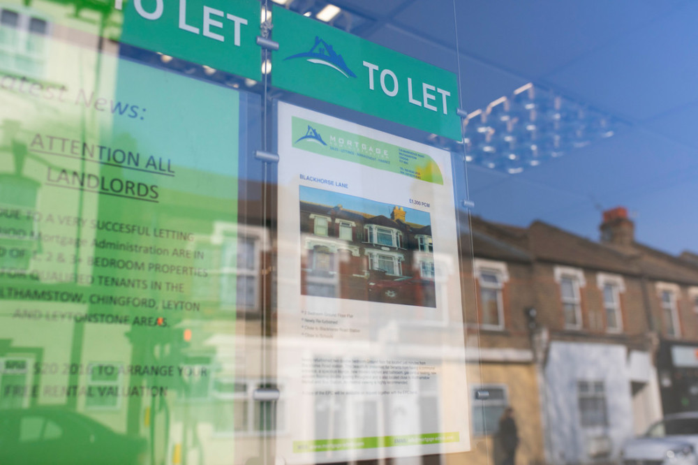 Image of adverts displayed in a letting agents' window.