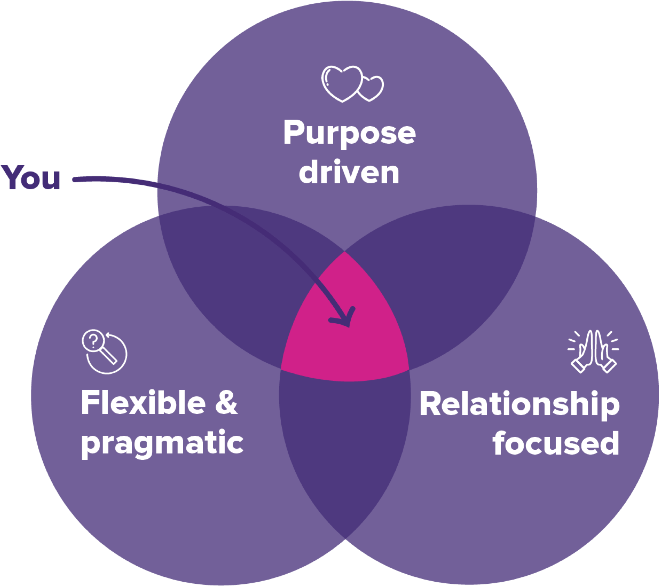 Venn diagram showing that Boost's ideal client is relationship-focused, purpose-driven and pragmatic and flexible.