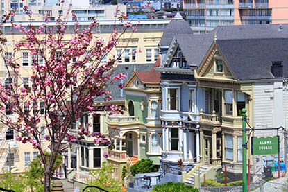 San Francisco Alamo Square Park and the Painted Ladies