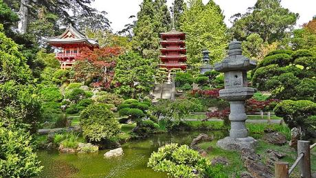 Japanese Tea Garden Golden Gate Park