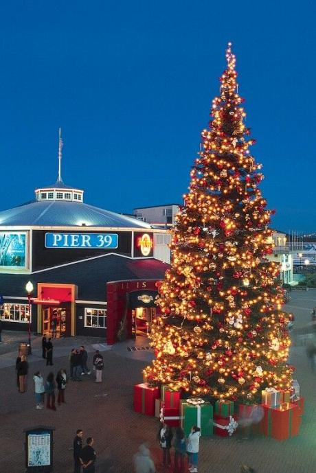 Pier 39 nightly Christmas Tree lighting experience