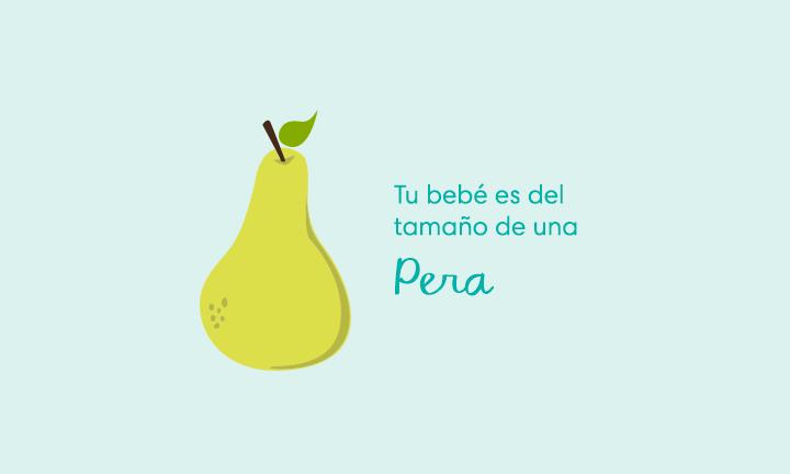 Tu bebé es del tamaño de una pera
