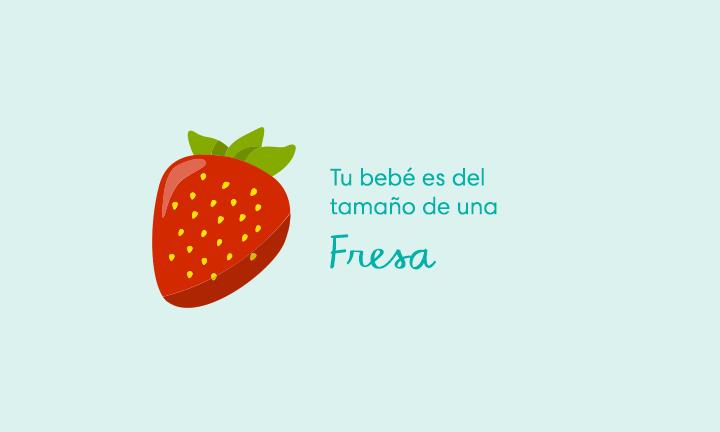 Tu bebé es del tamaño de una fresa