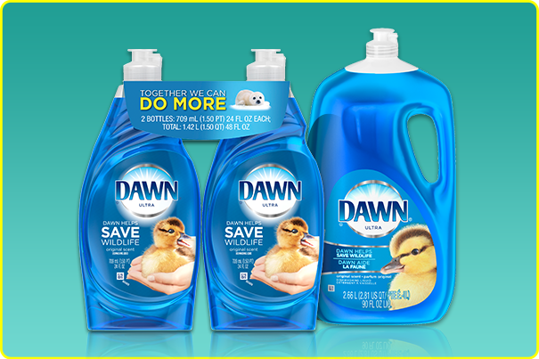Dawn_Product_Articles