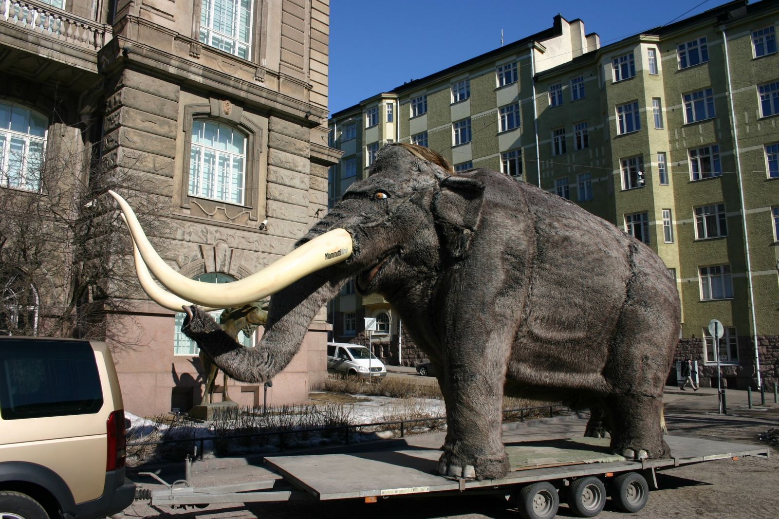 Natural History Museum in Helsinki