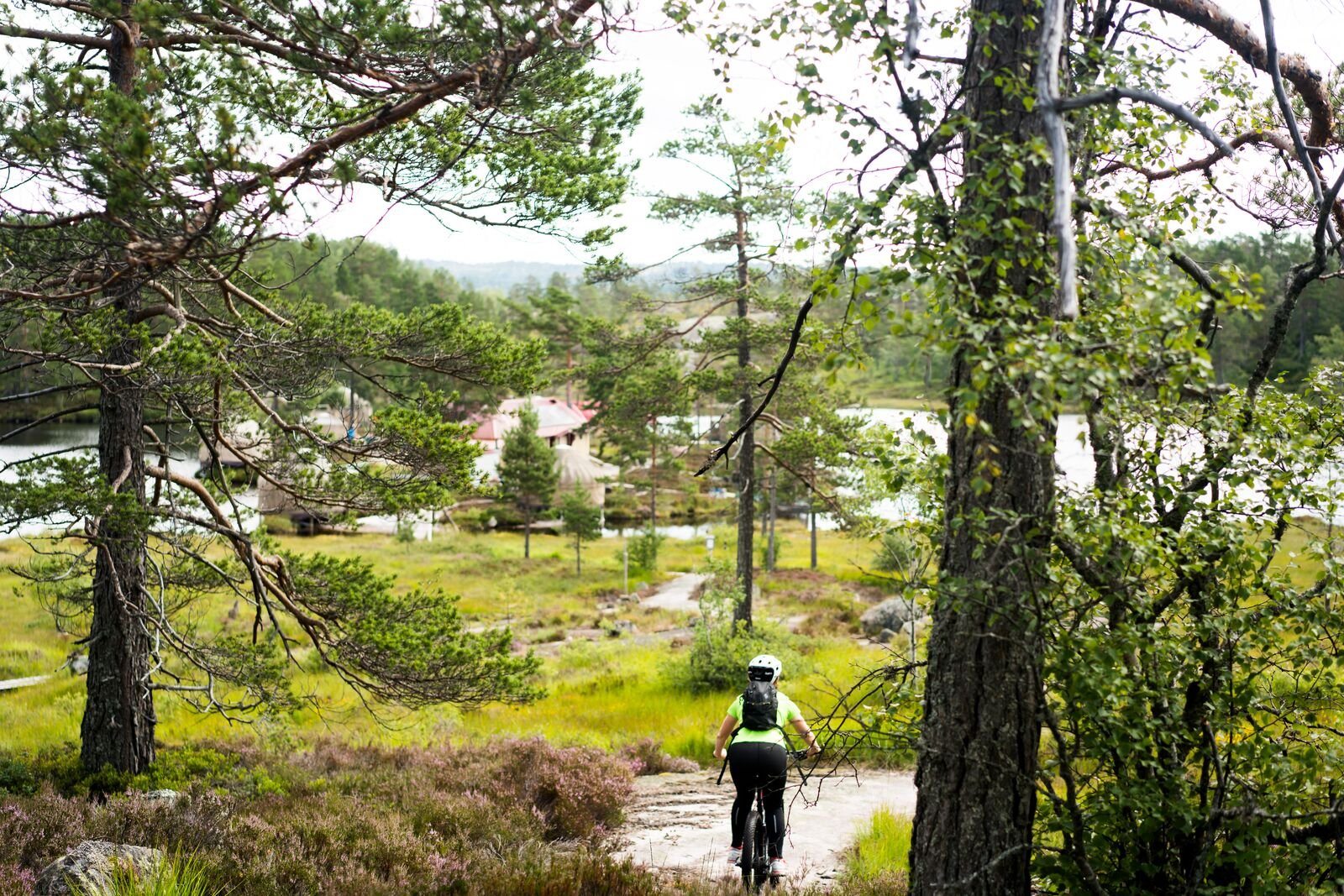 large-Mountain biking Canvas Hotel-Anton Ligaarden - VisitNorway.com