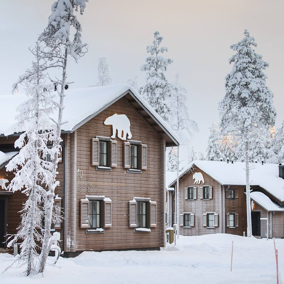 New Years tours in Lapland Ranua Finland