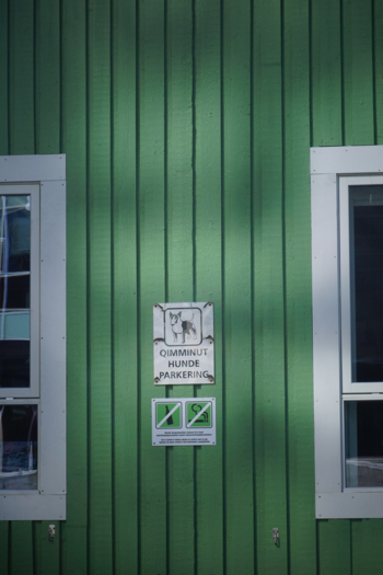 Dog parking in Nuuk, Greenland