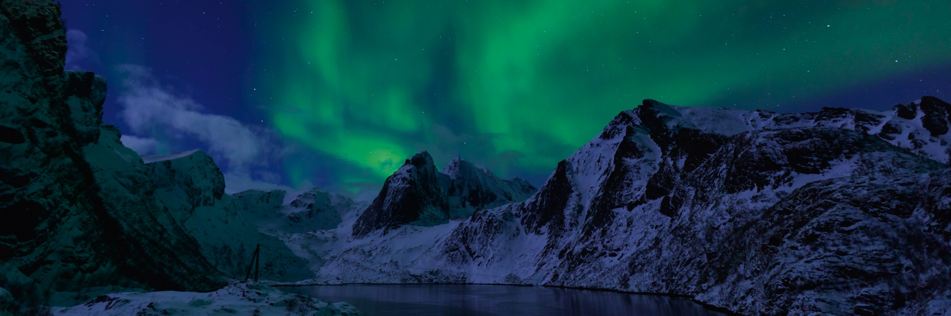 Norwegian Whale Watching & Northern Lights voyage