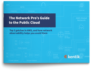 Network Pro's Guide to the Public Cloud