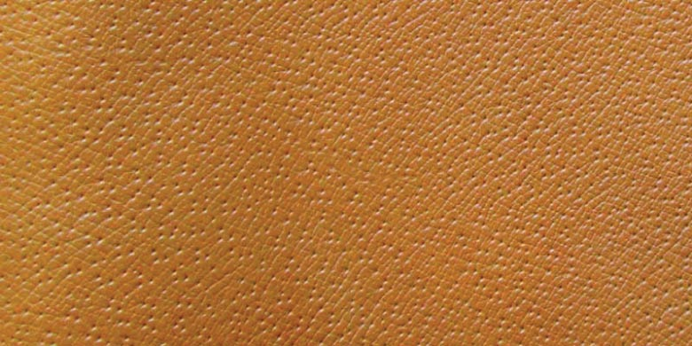 Pig Leather