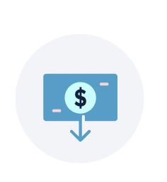 Acheter en ligne d'icône