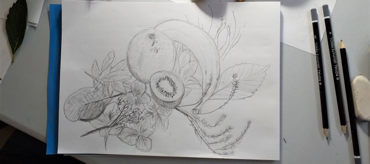 A drawing of fruit