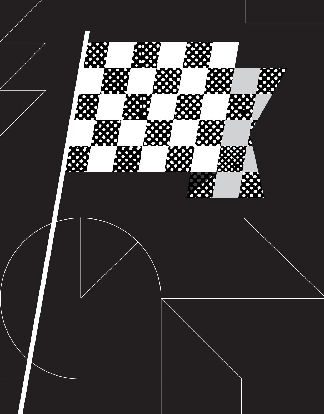 Illustrated racing flag