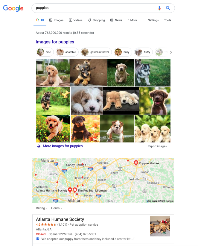 Puppies SERP