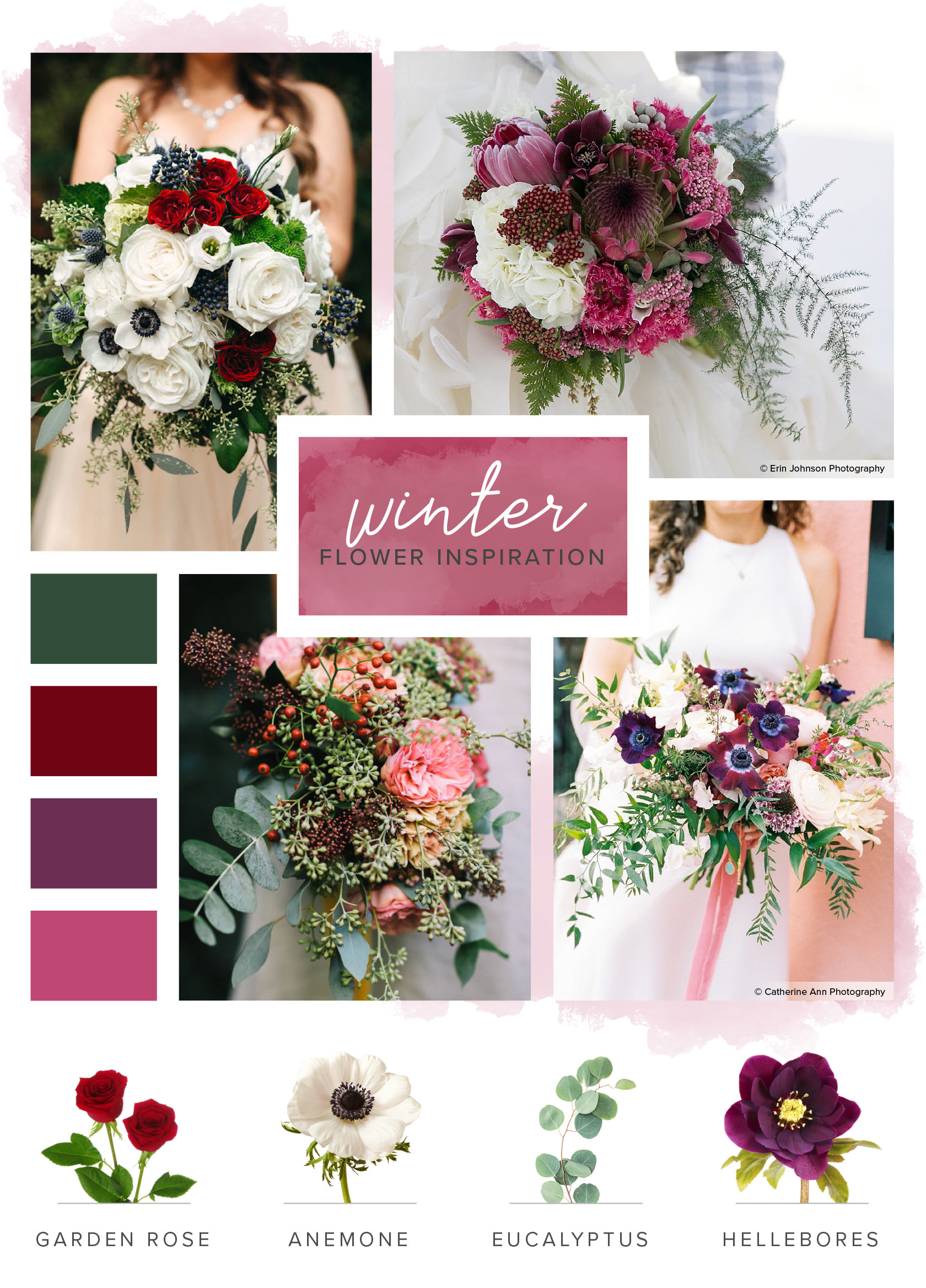 flower season guide winter