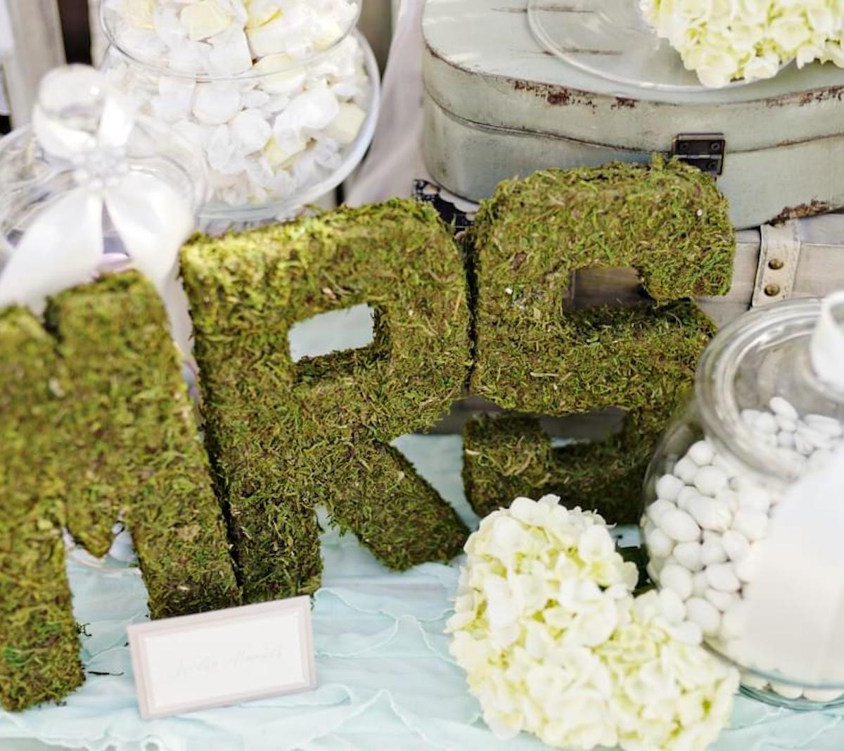 A Guide To Bridal Showers Zola Expert Wedding Advice