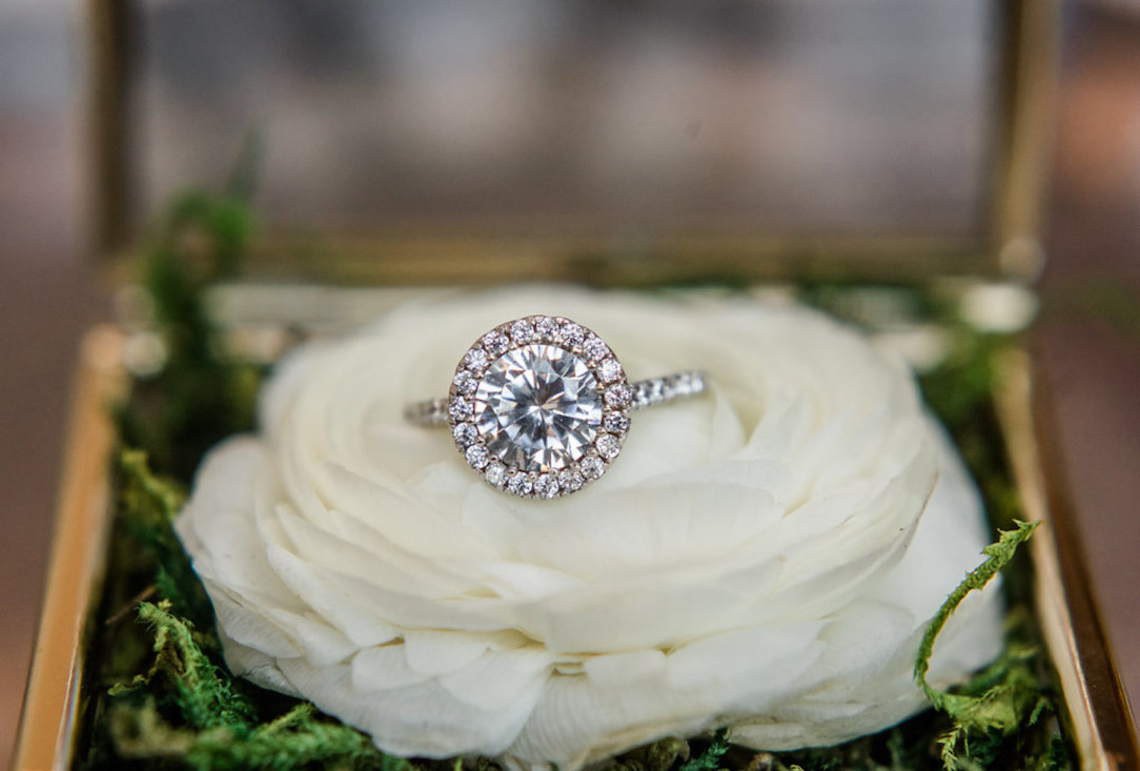 diamond engagement ring with a halo setting resting on a white ranunculus flower