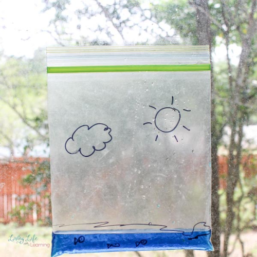 Water Cycle Bag