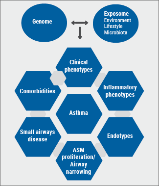 ERS 2018 - asthma: Figure 1 Diagram depicting