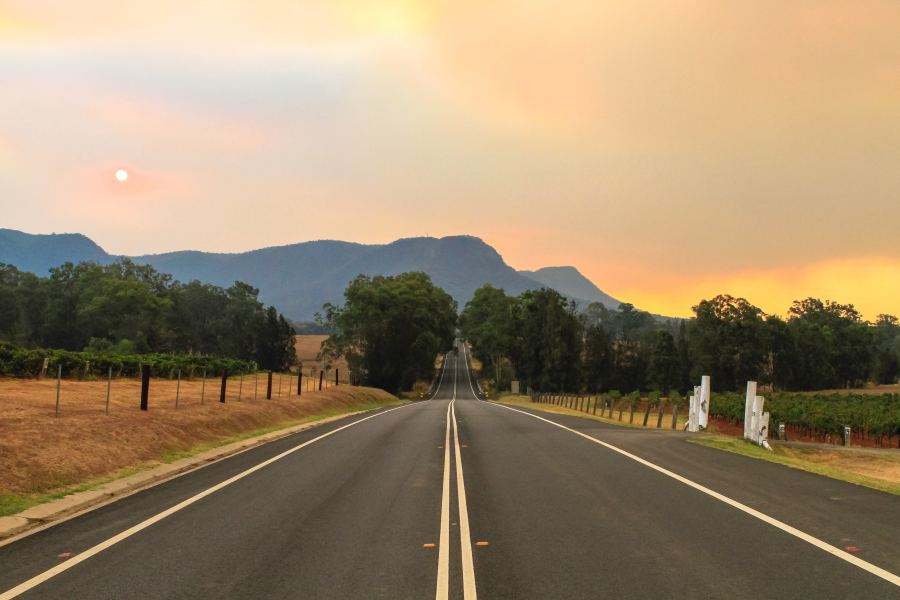 Image for Article: Lander & Rogers takes time out for bushfire relief
