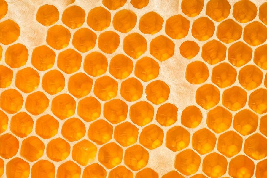 Orange Honeycomb