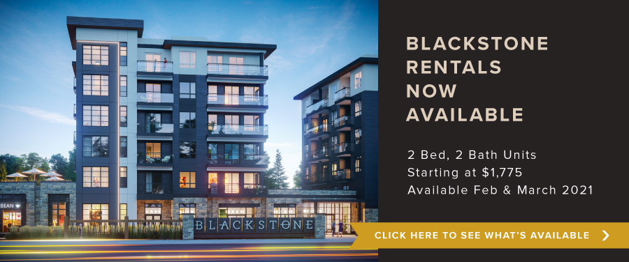 Blackstone Rentals now Available