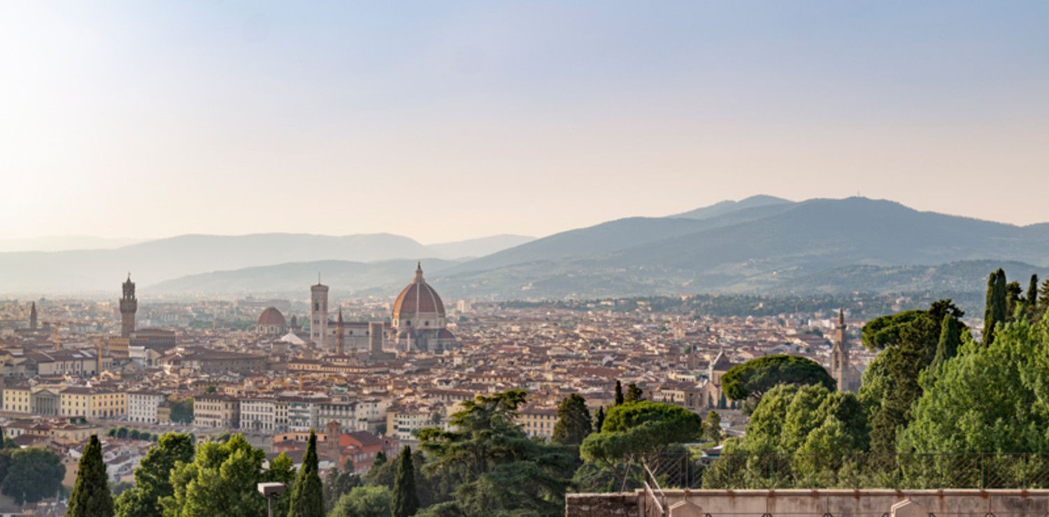 Florence seen from  the Abbey of San Miniato