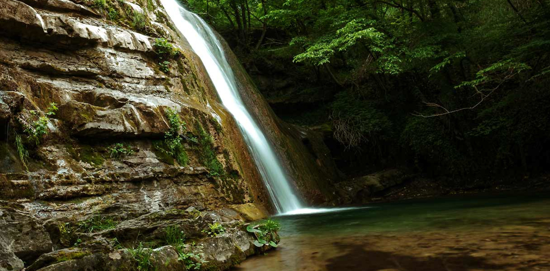 nobel foreste casentinesi