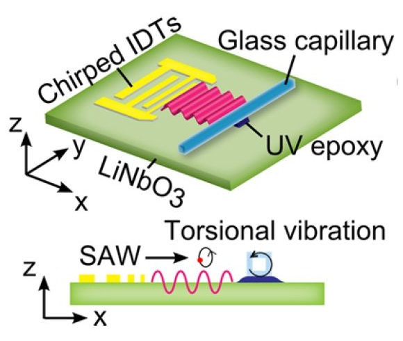 acoustofluidic chip research fig1 (cr)