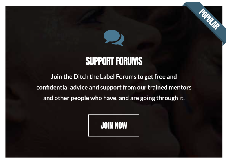 Screenshot of call-to-action image to join Ditch the Label support forums
