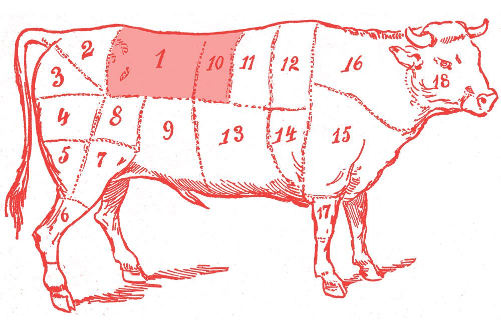 Illustration of a cow with the filet section highlighted