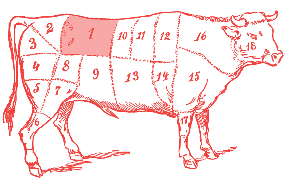 Illustration of a cow with the sirloin section highlighted
