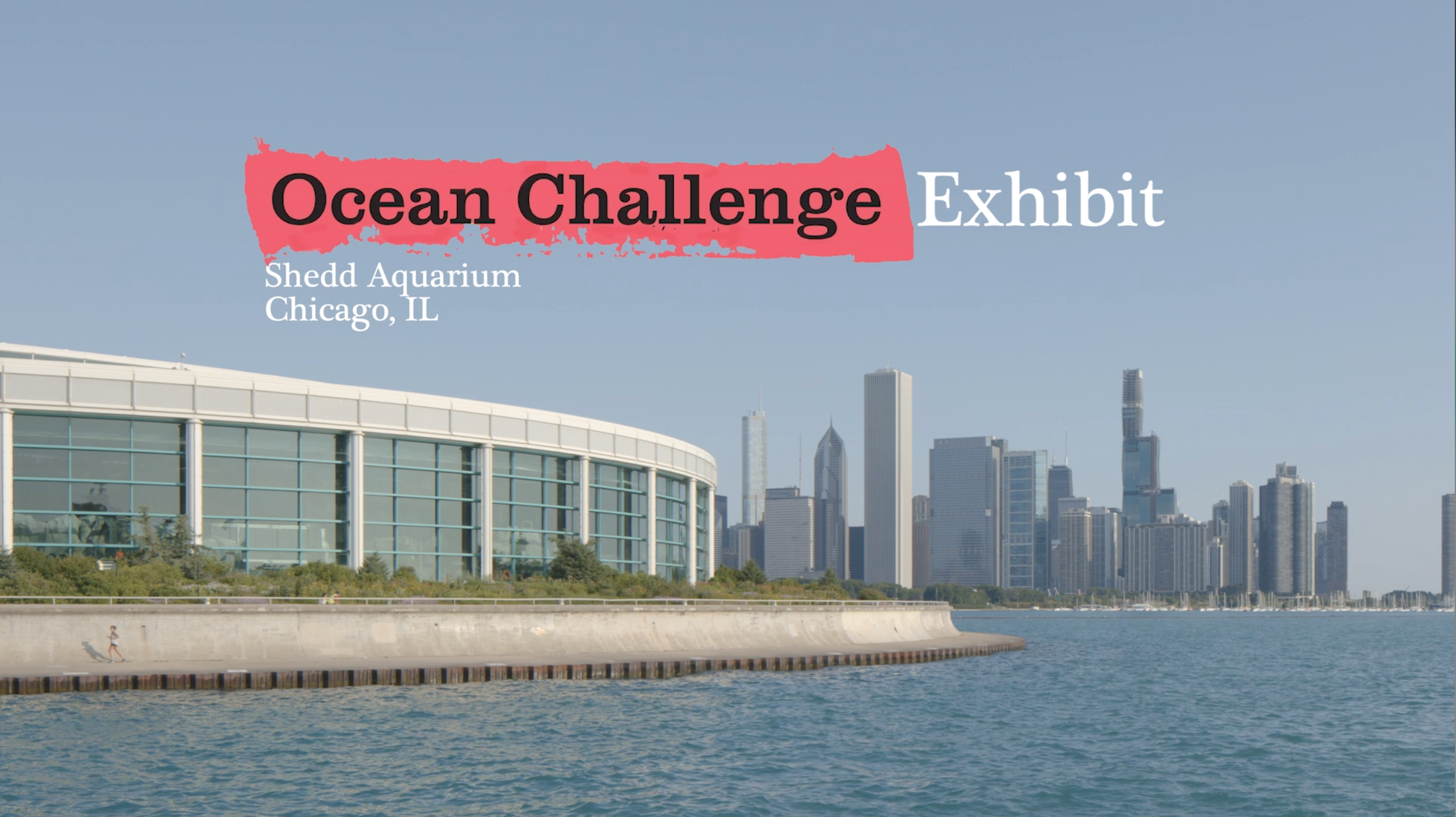 Ocean Challenge - Students Rebuild - Shedd Aquarium FINAL