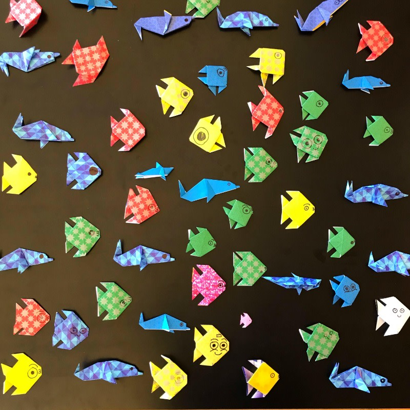 These colorful origami fish were created by the SEM Surfers team of San Elijo Middle School in San Marcos, California. Together, this team has already submitted 589 sea creatures raising over $1,000 for ocean conservation.
