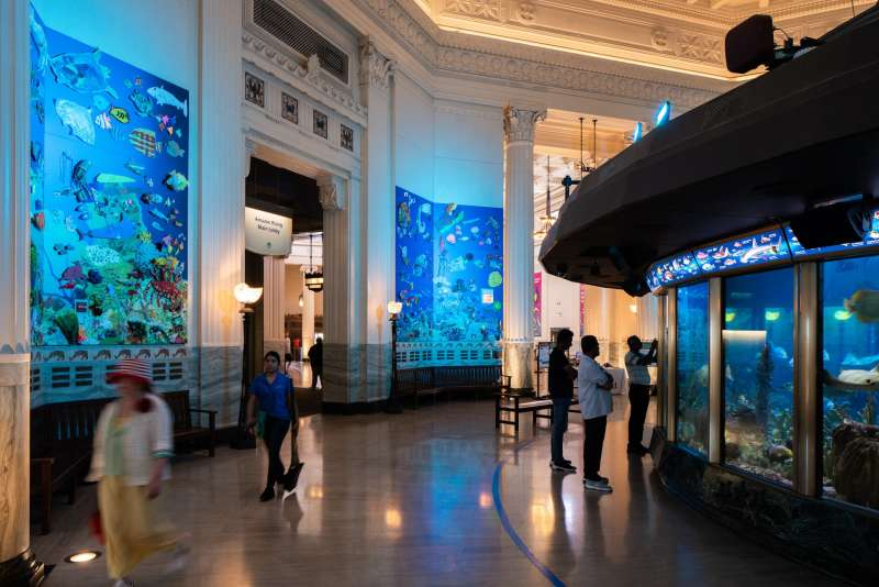 Over 1,000 unique pieces of art were used in our Ocean Challenge art exhibit at Shedd Aquarium in Chicago!