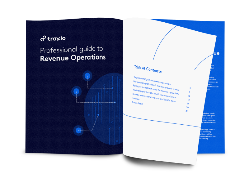 The Professional Guide to Revenue Operations
