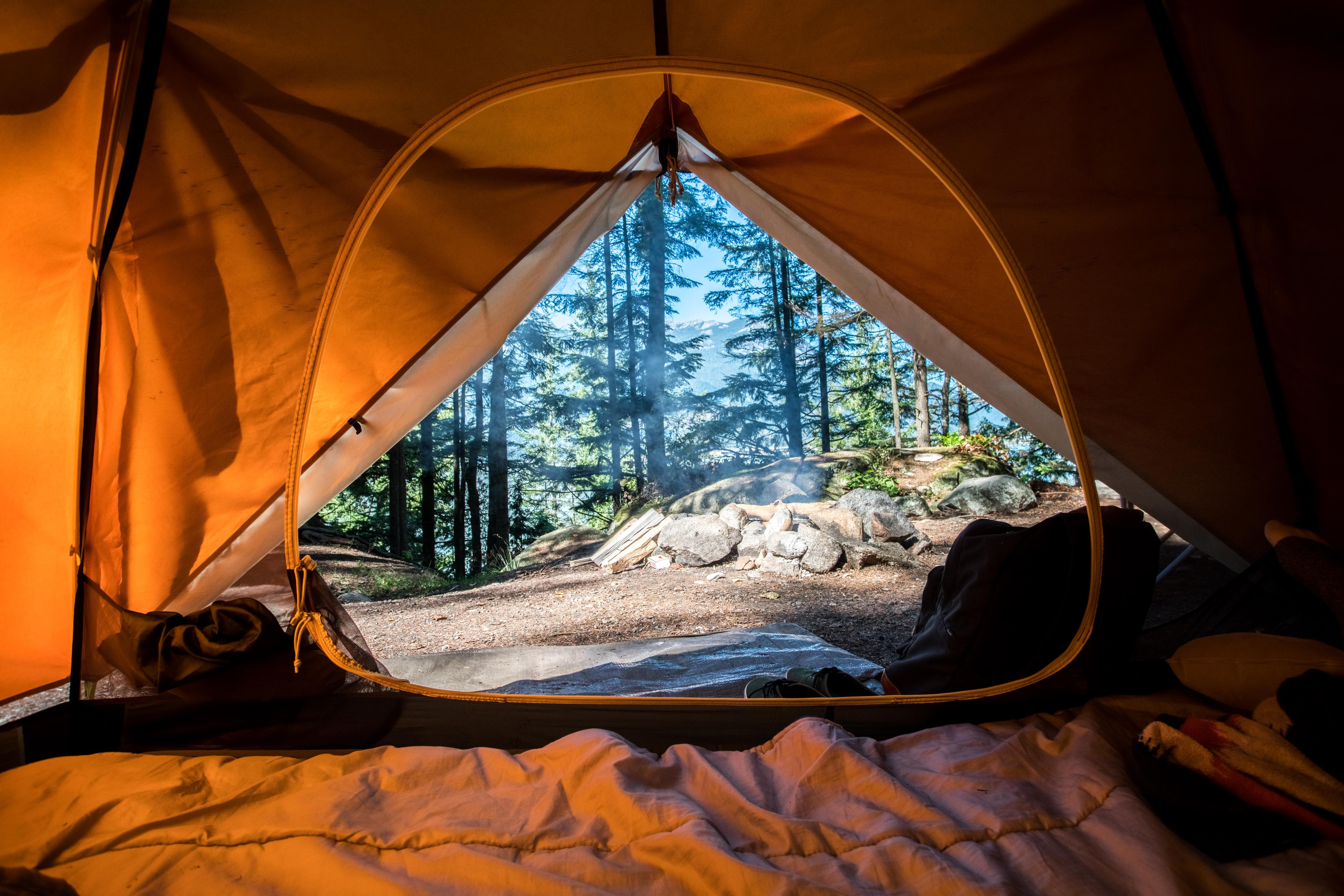 View From Inside Tent Looking Out At Pine Forest By Scott Goodwill Unsplash