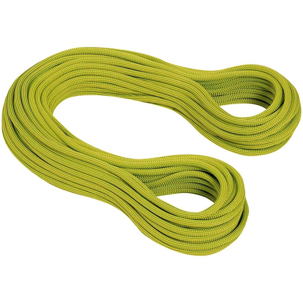 Mammut 9 5 Mm Infinity Dry Dynamic Rope