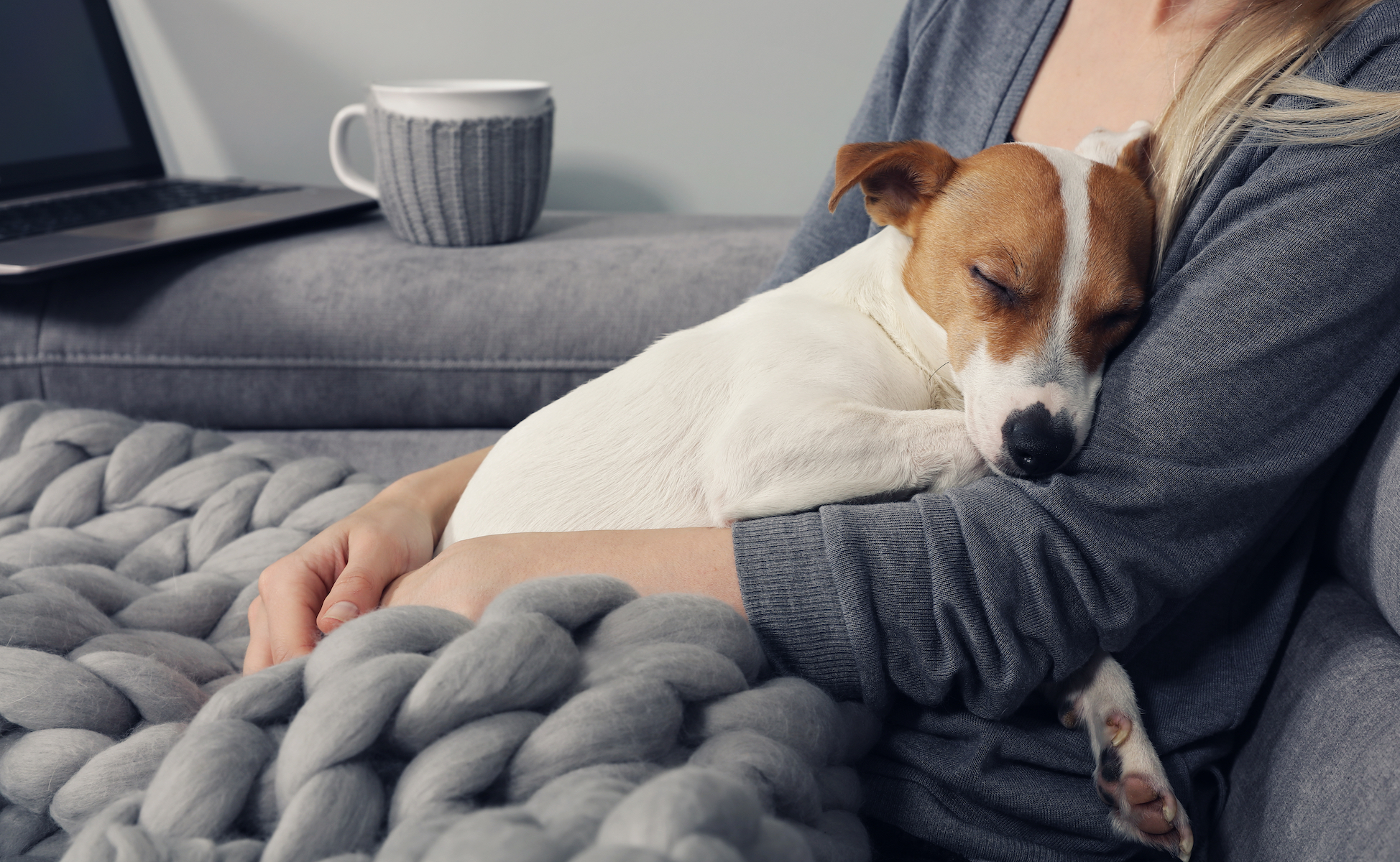 Canva - Cozy home, woman covered with warm blanket watching movie, hugging sleeping dog. Relax, carefree, comfort lifestyle.