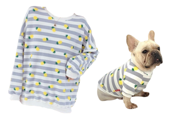 pineapple sweater dog owner set