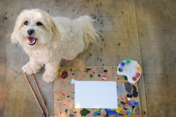 Canva - Painting Puppy