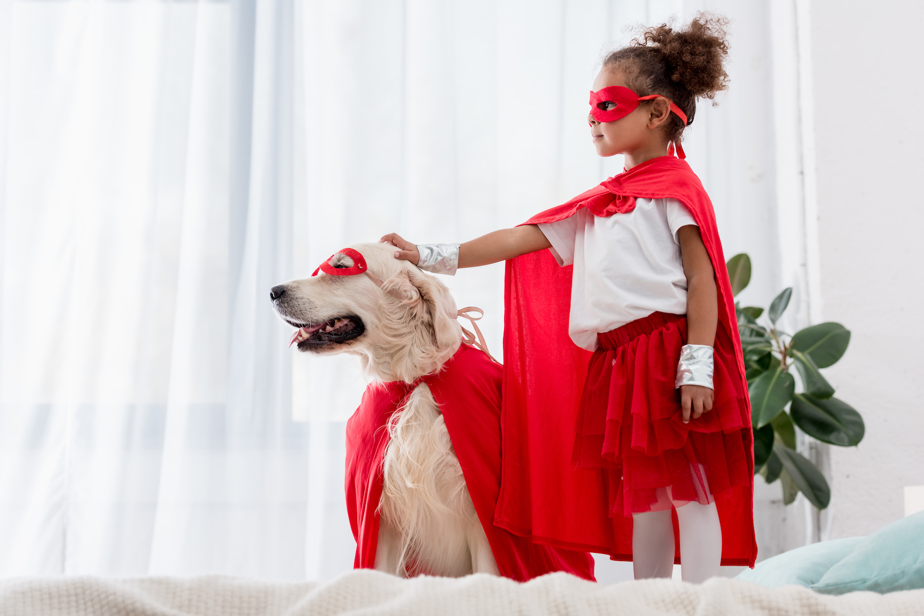 Canva - Side view of cute little african american kid and dog standing on the bed